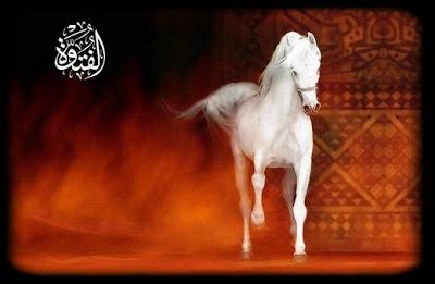 Resultado de imagem para Em uma vila bem distante vivia um velho muito pobre. Ele possuia um cavalo branco que era belíssimo e de muito valor. Todos tinham muita inveja dele. Os reis e os nobres tinham ambição pelo cavalo