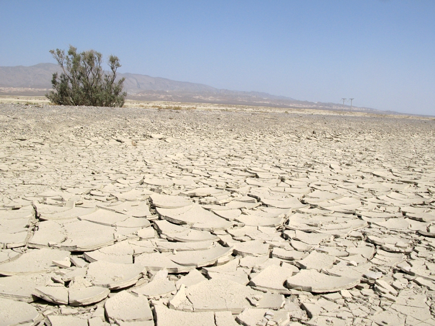 https://depatavium.files.wordpress.com/2018/12/01737-Karakum_Desert.jpg?w=872&h=654